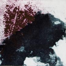 A02_METAMORFOSI